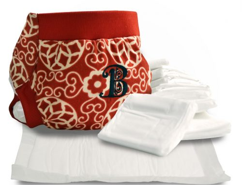 Hybrid Cloth Diapers – A step towards healthy diapering